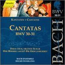 Sacred Cantatas Bwv 30-31 by JOHANN SEBASTIAN BACH (1999-07-13)