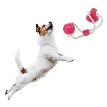 GHONLZIN Multifunction Pet Molar Bite Toy, Juguete Mordedor Mascota, Juguete Multifuncional para mordedura de Molar, Mordedura de Perro del Entrenamiento con Ventosa (Red)