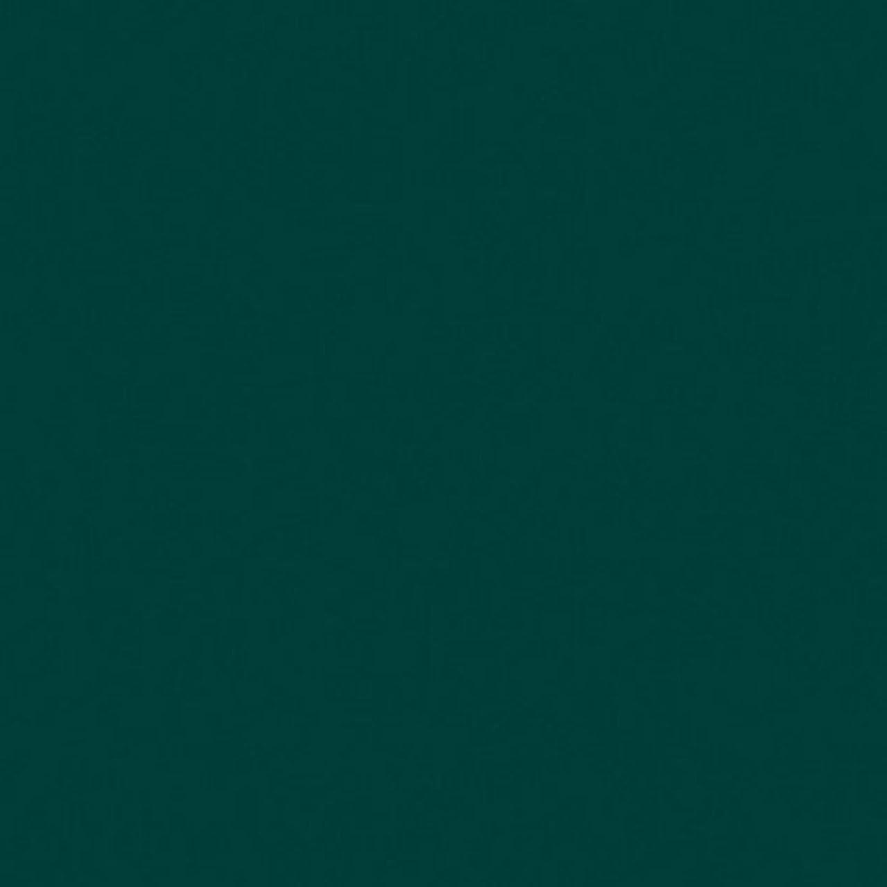 EFCOLOR 25 ml Dark Green, Resin 5 x 5 x 3 cm