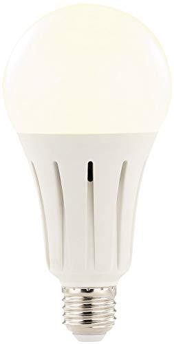 Luminea LED Birnen: High-Power-LED-Lampe E27, 24 Watt, 2.250 Lumen, warmweiß 3.000 K (Leuchtmittel LED E27)