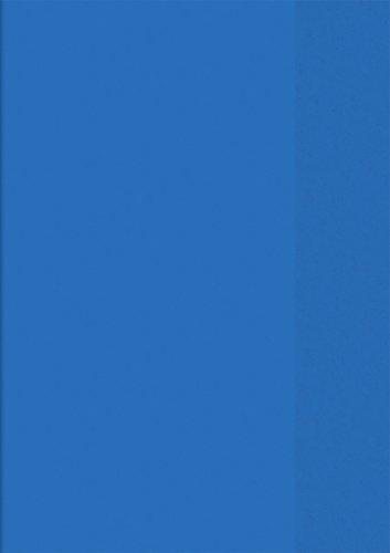 Brunnen 104050430 Hefthülle / Heftumschlag (A4, Folie, transparent, mit Namensschild in der Einstecktasche) blau