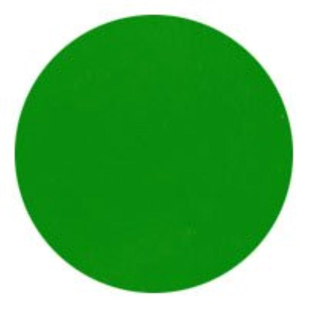 壮大シンポジウム可動式★NFS MELTY GEL(メルティージェル) カラージェル 3g  3754 イエローグリーン