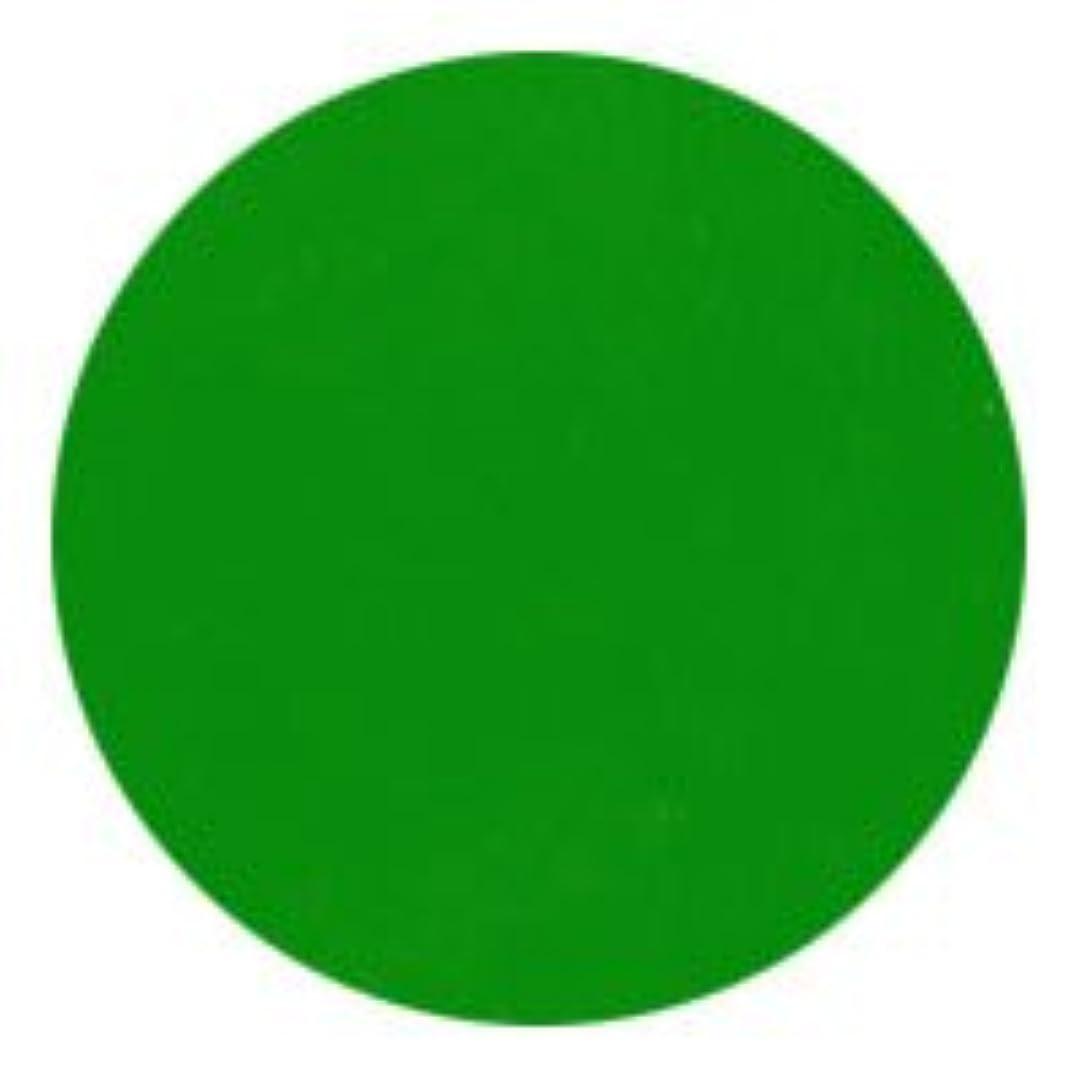 行政妊娠した周波数★NFS MELTY GEL(メルティージェル) カラージェル 3g  3754 イエローグリーン