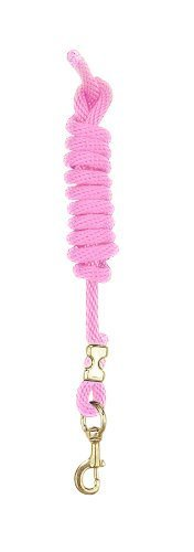 Perri 's Poly Nylon Lead with Snap, Hot Pink, 8-feet by Perri 's