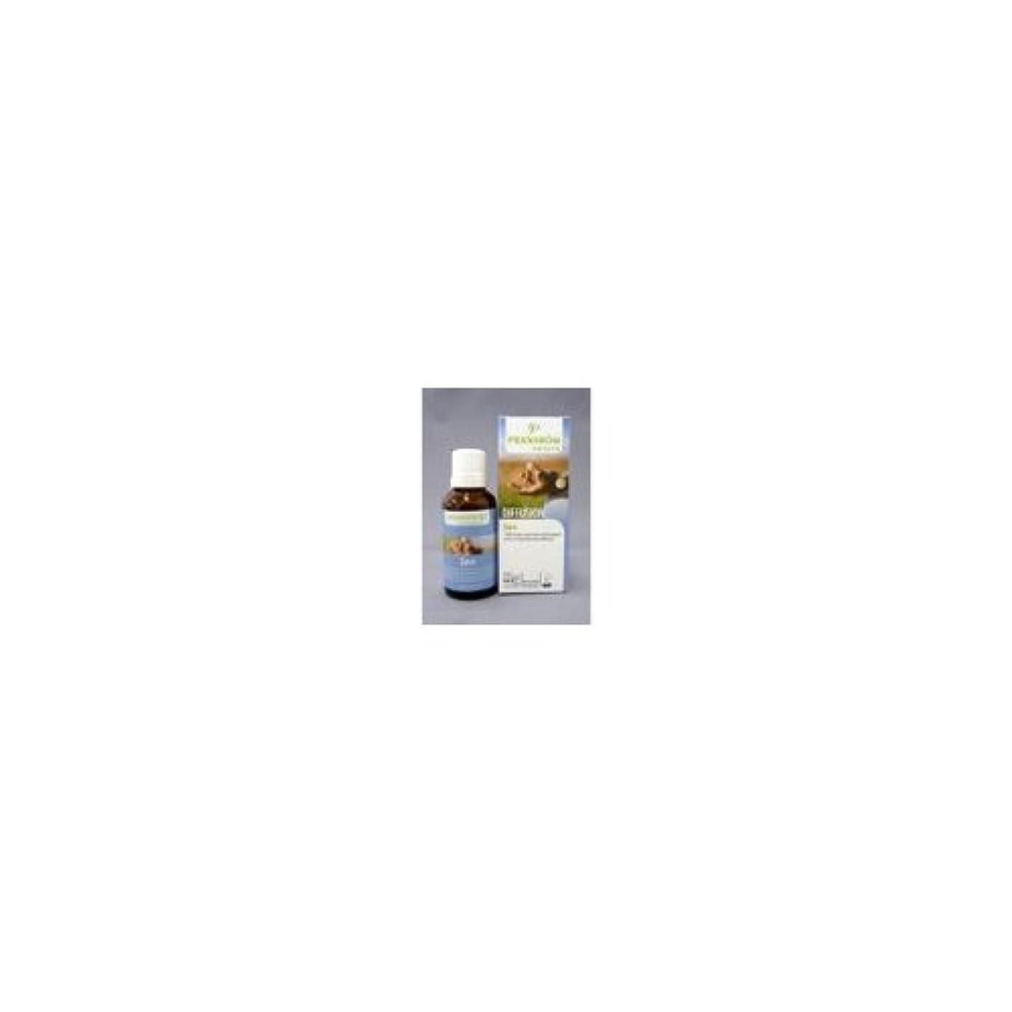 大理石セマフォ大破穏やかな日々(Zen)/プラナロム社のエアフレッシュナー