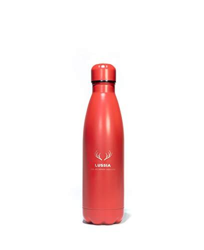 BORRACCIA TERMICA IN ACCIAIO INOX PER PALESTRA, SCUOLA E LAVORO (Rossa (500 ml))