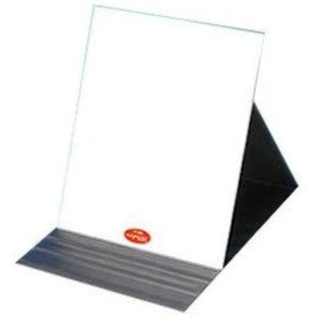 不適切な発揮するバイバイありのままの貴女を映し出す鏡『ナピュア プロモデル角度調整3段階付き折立ミラー エコ3L』