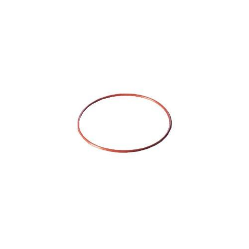 DURAN 29 222 51 O-Ring, Rot, FEP-ummantelt, 120 DN passend für Flansch