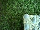 Ta-Bo Lifestyle Kunstrasen Rasen Teppich Fertigrasen grün 200x350 cm Rasenteppich