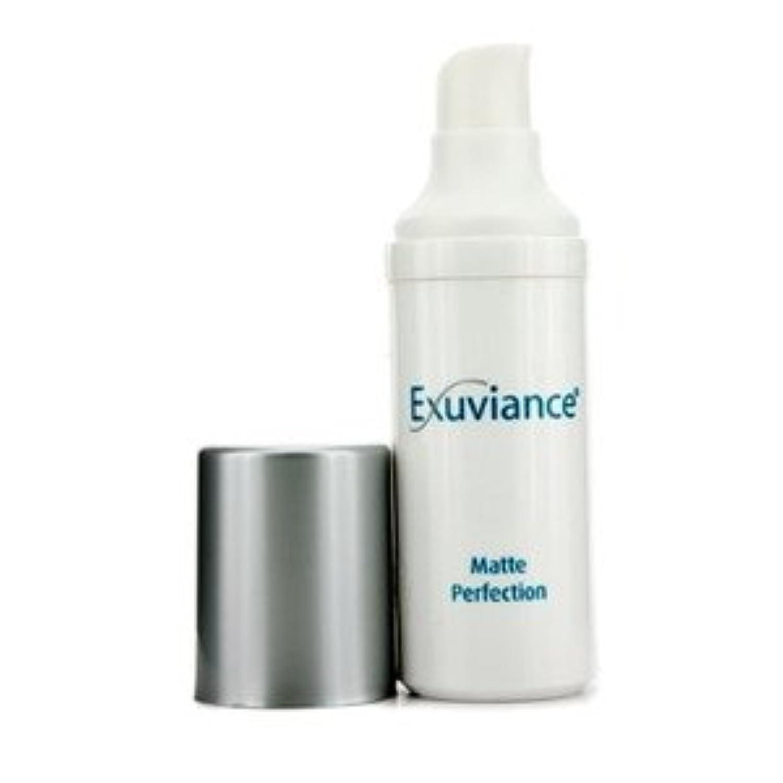 エクスビアンス(Exuviance) マット パーフェクション 30g/1oz [並行輸入品]