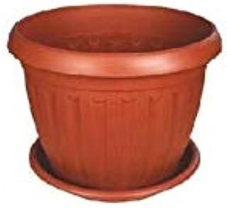 اصيص نبات الماني 25 سم