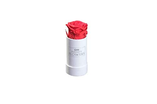 Infinity Flowers Rosenbox Infiniti Rosen 2-Jahre haltbar, Blumen in Box als Geschenkidee