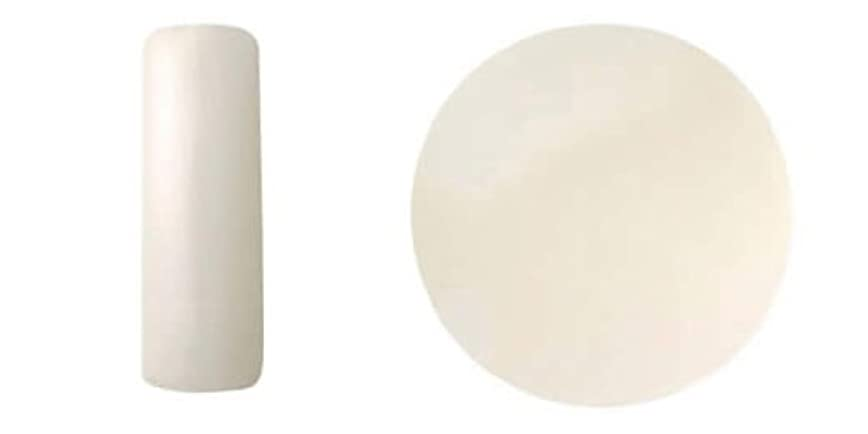 家レンダリング咽頭CHRISTRIO ジェラッカー 7.4ml 260 チーズケーキ