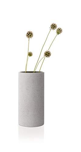 blomus -COLUNA- Vase M aus Polystone, hellgrau, puristische Beton-Optik, dekorative Vase in moderner Optik, hohe Tischdeko, exklusives Wohnaccessoire (H / B / T: 24 x 12 x 12 cm, hellgrau, 65596)