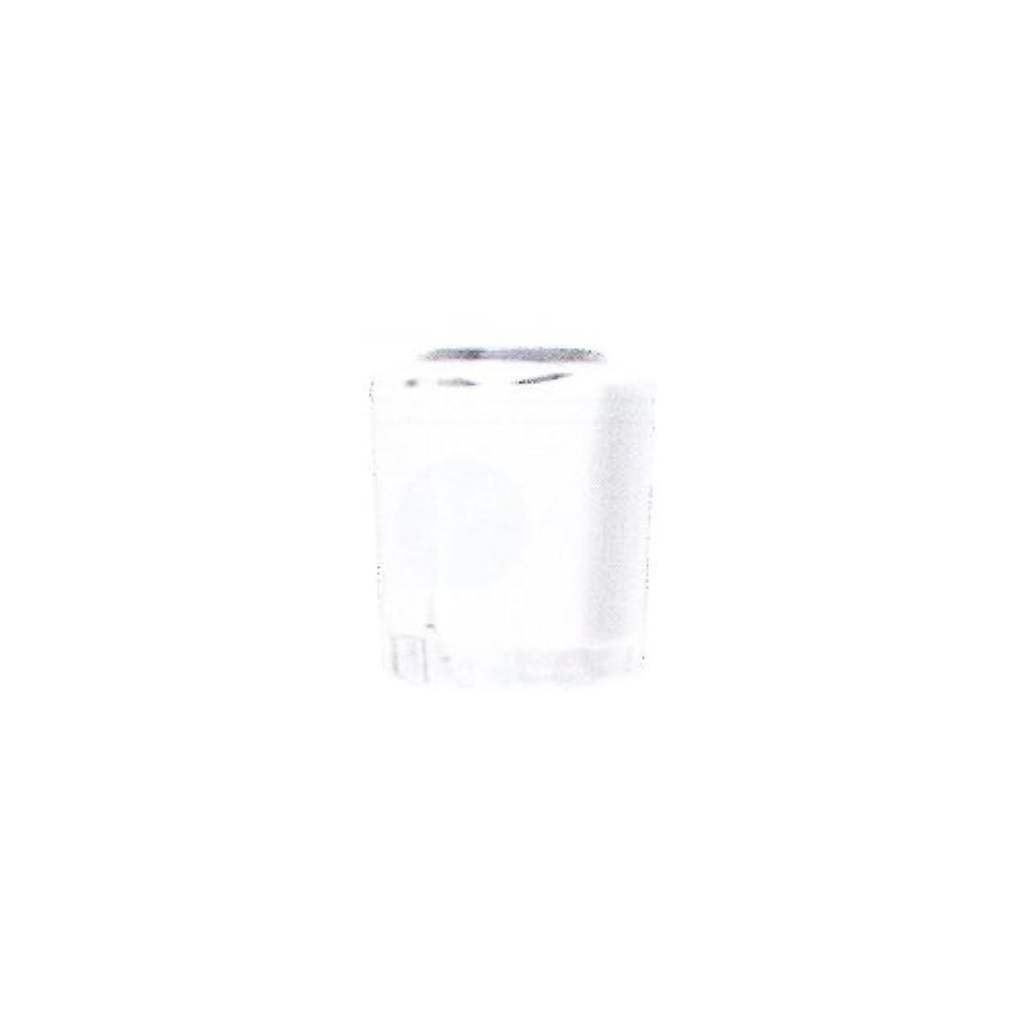 福祉妻大事にするSHAREYDVA カラー15ml No.02 マットホワイト