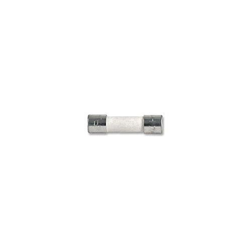 10x Sicherung selbstschließend (T) Keramik 10A/250VAC 5x 20mm