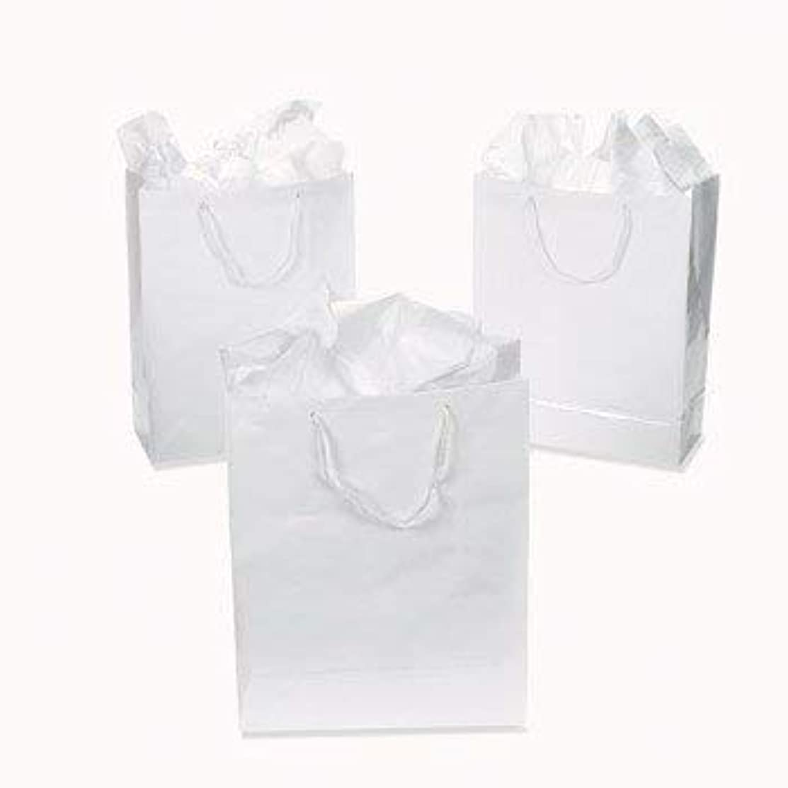 Small White Gift Party Bags 12 Pack