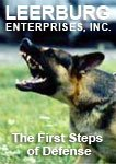 1st Steps of Defense