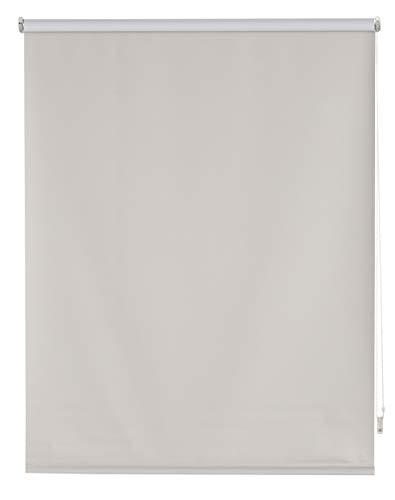 Blindecor Draco Estor Enrollable Opaco Liso, Plata, 100X230