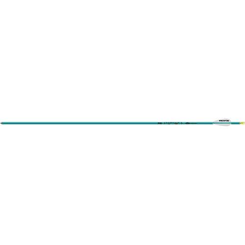 Easton Genesis V2 Arrows with 3' Vanes (6 Pack), 1820, Teal