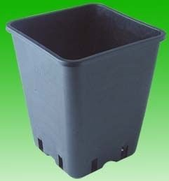 Pot carré Noir 17,5 x 17,5 x 10 cm - 6 Litres