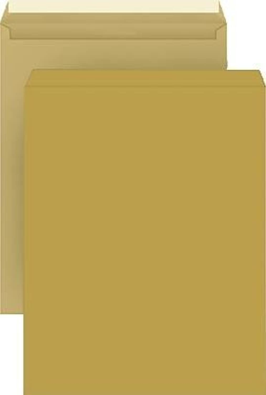 Versandtaschen B4 HK 4294 braun ohne Fenster 110 g qm Inh.250 B000KTCX4C | Fein Verarbeitet