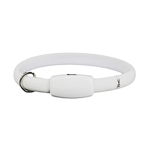 KANGDILE Collar de Perro LED, Collar de Perro de Mascotas resplandeciente Recargable USB para Noche de Seguridad para niños al Aire Libre, Collar Luminosa para Perros pequeños Grandes Grandes