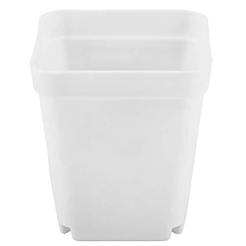 Cafopgrill 20 macetas de plástico para plantas, mini modernas y suculentas, recipientes pequeños, cuadrados, perfectos para jardineros (blanco)