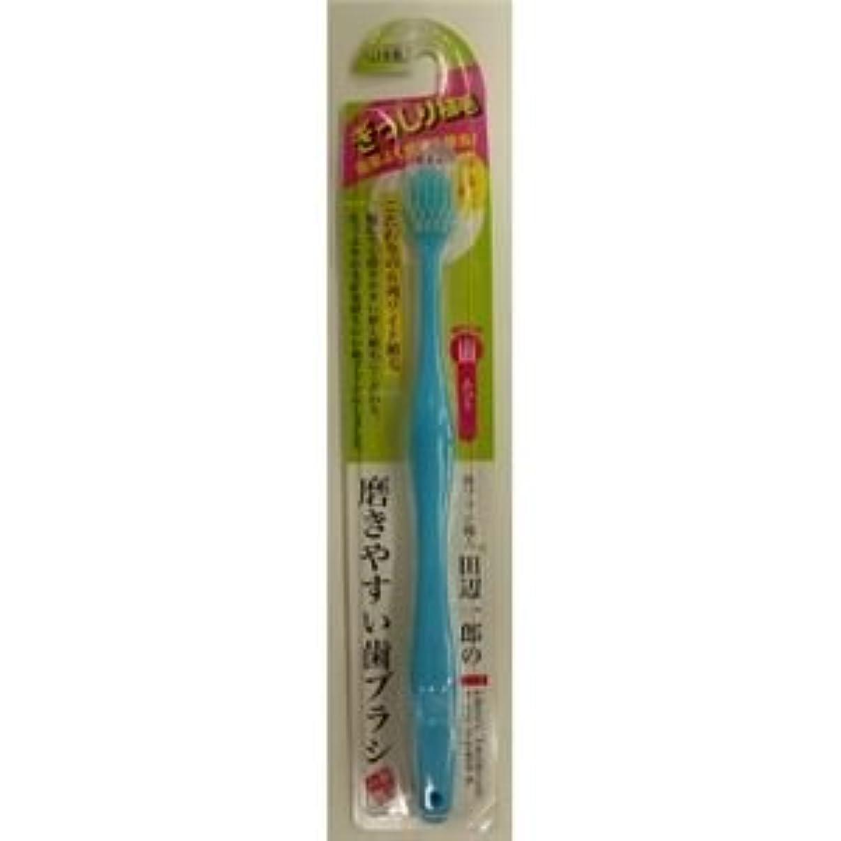 アスリート十分です拡声器(まとめ)ライフレンジ LT-30田辺一郎の磨きやすい歯ブラシ ワイド ふつう 【×12点セット】