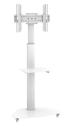 Dynamic Wave MoTV-700 LED LCD TV Ständer Plasma TV Standfuss TV Trolley bis 180cm (70 Zoll) Diagonale 1,2-1,8m hoch, bis 63 Zoll