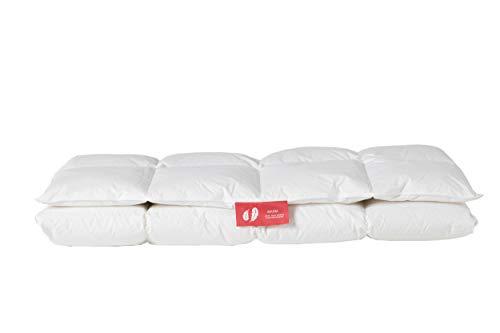 Daunenfee - Unsere leichte Winterdecke für kalte Wintertage. 240x220 cm, 90{42bac3810ac1534801e0df94b2c9994cdf1d8c9eebc78c157709997d278694c2} Daune, Zertifiziert, umweltfreundlich, waschbar & allergikergeeignet., weiß, 240 x 220 cm
