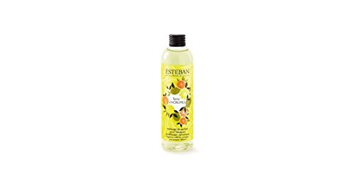Esteban Paris Recharge de Parfum 250 ML pour diffuseur Parfum céramique Terre d'agrumes