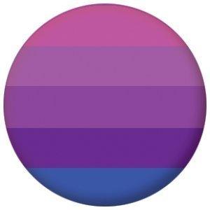Transgender Pride (purple) Flag 25mm Button Badg