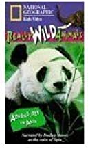 Best the wild vhs Reviews