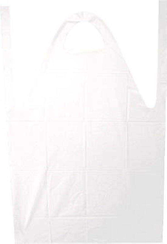 目的荒れ地メキシコ積水化学 バリカルエプロン 白色 Lサイズ J5M5129 00373800【まとめ買い3枚セット】