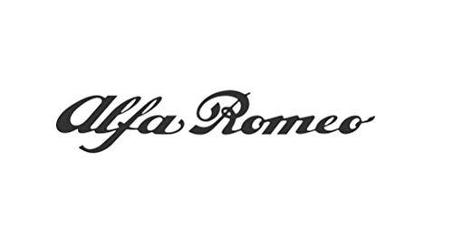 Galuisi Adesivo Sticker Alfa Romeo Scritta Auto Logo (Rosso, Small 10 * 2 cm)