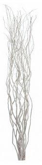 Homestreet, mazzo di ramoscelli di salice attorcigliati per vasi da pavimento e visualizza 120 cm di altezza in marrone, nero, argento, oro o naturale (argento)