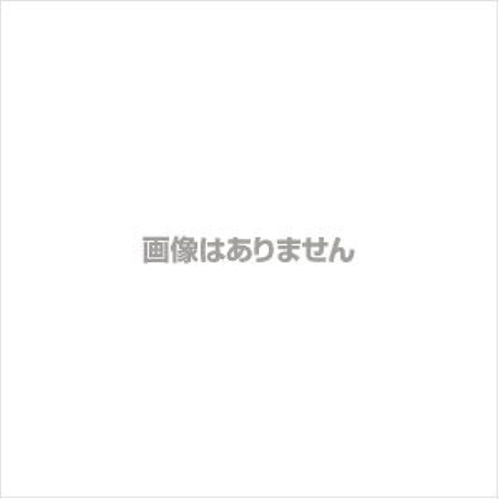 間欠ベルト無条件エスティローダー サイバーホワイトEX ホワイトニング パウダー(リフィル)【#04】 #ウォーム バニラ【訳あり】