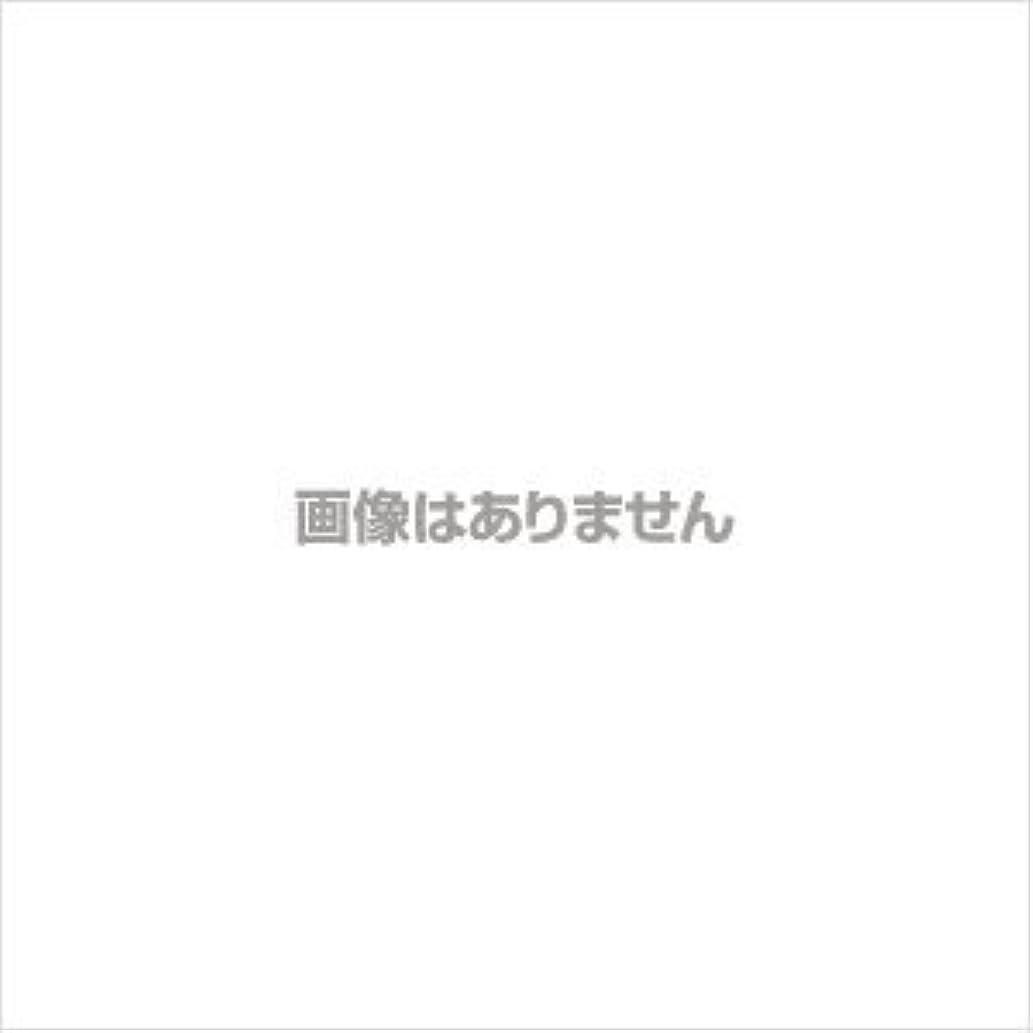 不振あざ歌手エスティローダー サイバーホワイトEX ホワイトニング パウダー(リフィル)【#04】 #ウォーム バニラ【訳あり】