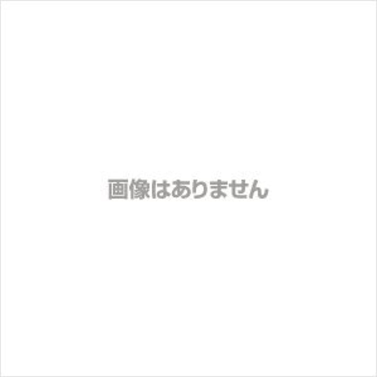 素晴らしさ衣装オペレーターエスティローダー サイバーホワイトEX ホワイトニング パウダー(リフィル)【#04】 #ウォーム バニラ【訳あり】