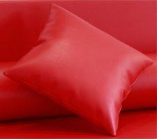 Cojín enfundado en Polipiel Náutico para Sofá Palet (Rojo)