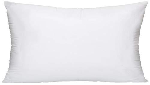 12 x 21 inch pillow insert - 1