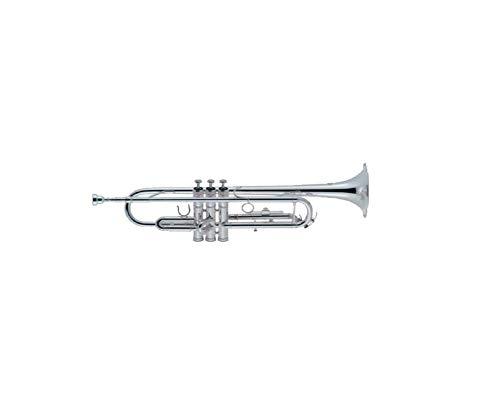 J. Michael TR300 - Trompeta en SI bemol, plateada