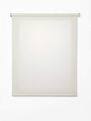 Rolgordijn, lichtdoorlatend, 100 x 250 cm, natuurlijke kleuren