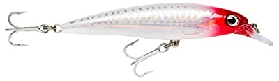 Rapala X-Rap Saltwater Fishing Lure from Rapala