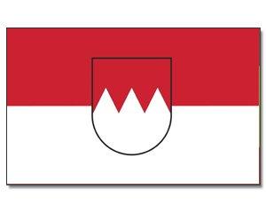 TOP QUALITÄT !! FLAGGE FRANKEN mit Wappen Fahne, Grösse: ca. 90x150 cm, SUPER GUTE QUALITÄT - KEINE hauchdünne Ware - Stoffgewicht ca. 110 gr/m2 - HOCHREISSFEST - für Innen/Aussenbereich