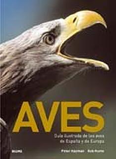 Aves: Guía ilustrada de las aves de España y Europa: Amazon.es: Hayman, Peter, Hume, Rob: Libros