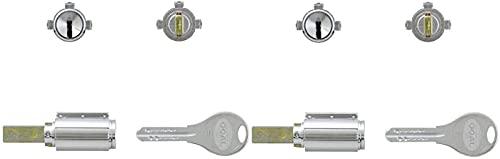 GOAL(ゴール) V18シリンダー PXタイプ 鍵 交換 取替え 2個同一セット テール刻印55 GCY-265 PX/PXG/TDD