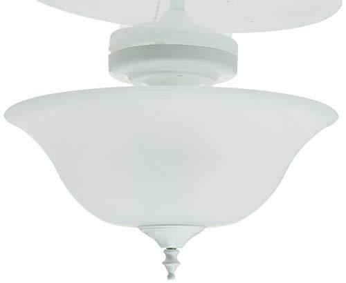 Ceiling Fan Light Kit 2022
