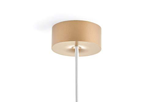 Preisvergleich Produktbild Deckenbaldachin,  Aluminium Gold,  Formschöne magnetische Baldachin mit integrierte Zugentlastung - Made in Germany